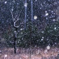 een kwartiertje winter