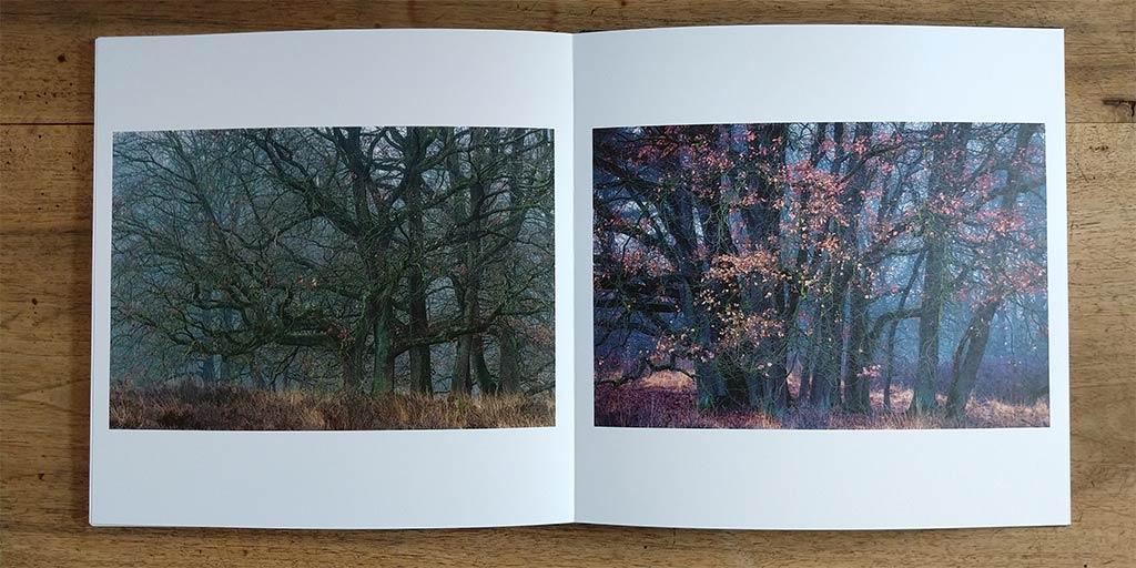 Deze 'medium dark' foto's komen prima over op het matte papier.