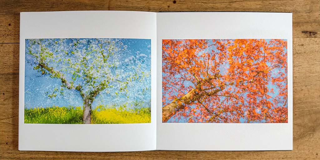 De lichte foto's komen precies uit zoals bedoeld. Zoals bij deze dubbele belichtingen.